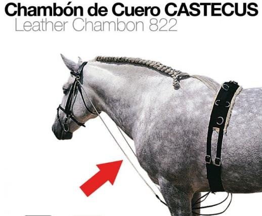 CHAMBÓN DE CUERO CASTECUS